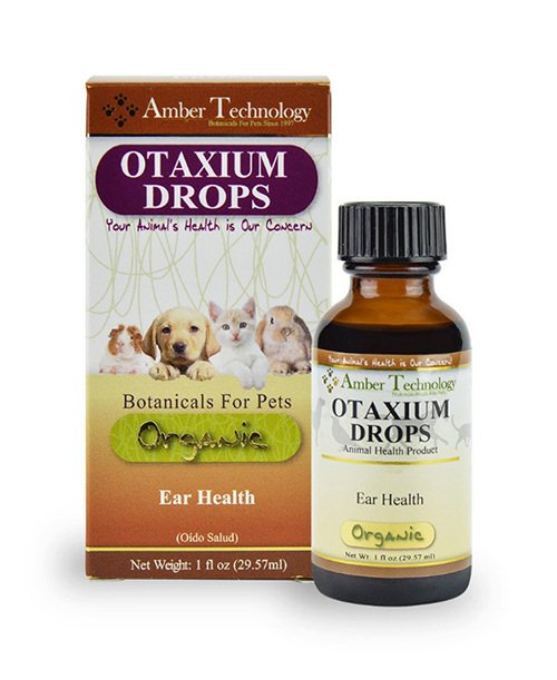 Home Remedies For Dog Ear Health